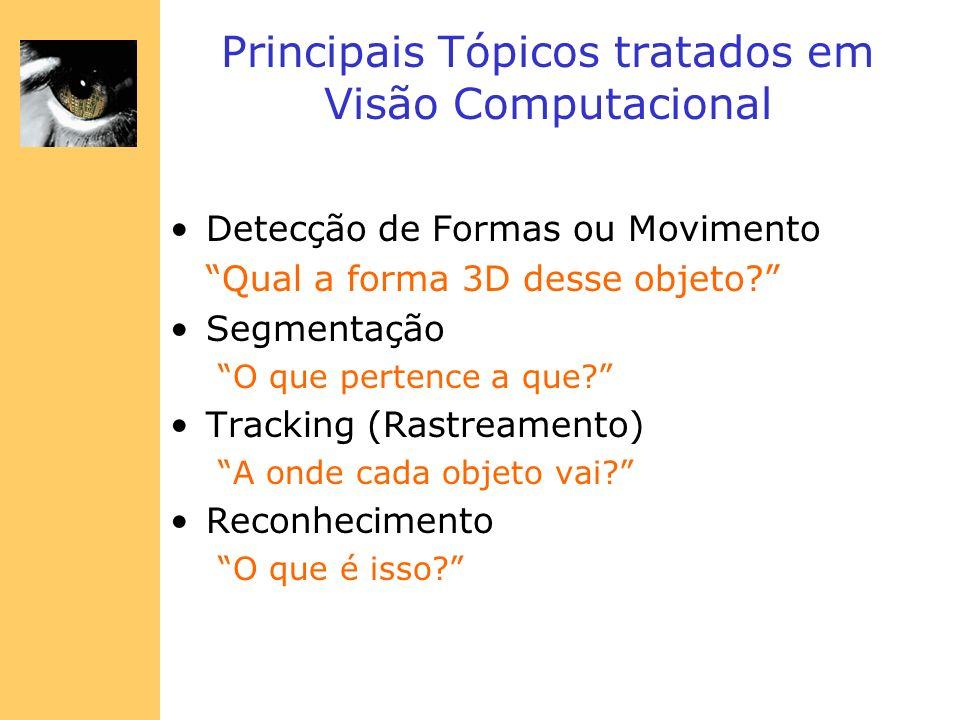 Principais Tópicos tratados em Visão Computacional