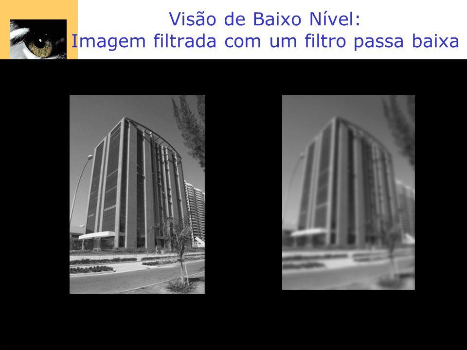 Visão de Baixo Nível: Imagem filtrada com um filtro passa baixa