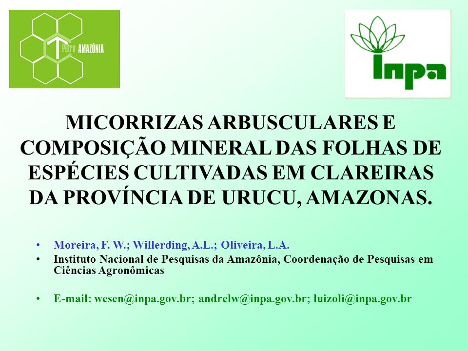 MICORRIZAS ARBUSCULARES E COMPOSIÇÃO MINERAL DAS FOLHAS DE ESPÉCIES CULTIVADAS EM CLAREIRAS DA PROVÍNCIA DE URUCU, AMAZONAS.