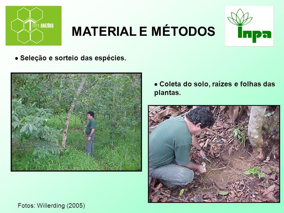 MATERIAL E MÉTODOS  Seleção e sorteio das espécies.