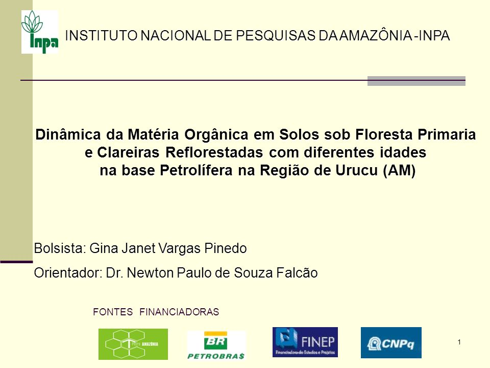 Dinâmica da Matéria Orgânica em Solos sob Floresta Primaria