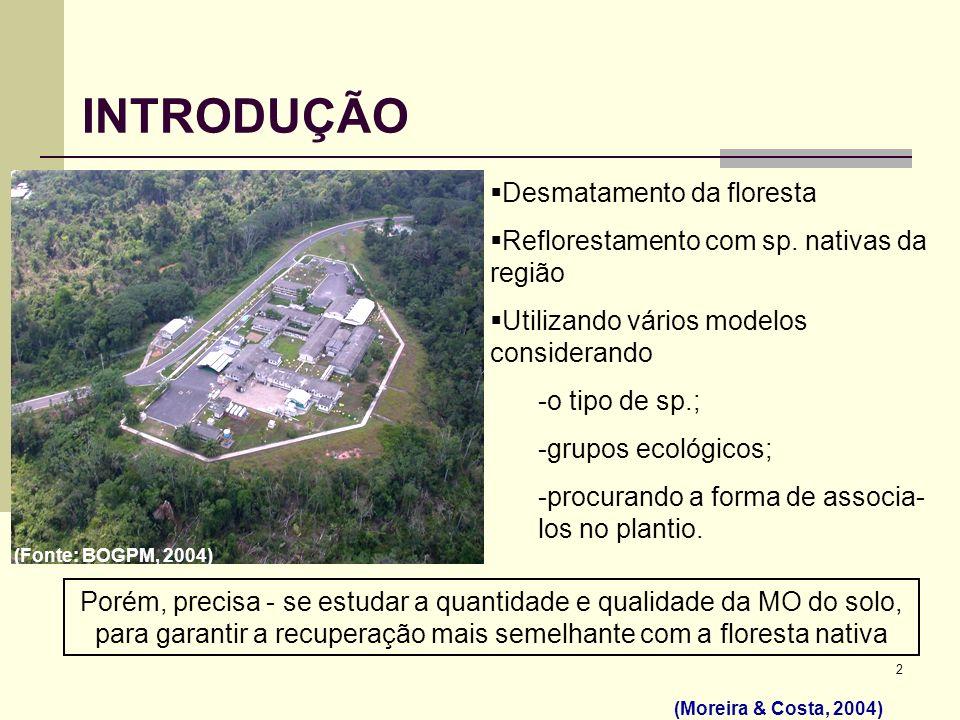 INTRODUÇÃO Desmatamento da floresta