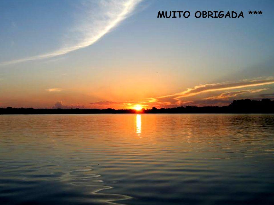 MUITO OBRIGADA ***