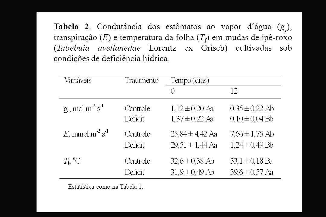 Tabela 2. Condutância dos estômatos ao vapor d´água (gs), transpiração (E) e temperatura da folha (Tf) em mudas de ipê-roxo (Tabebuia avellanedae Lorentz ex Griseb) cultivadas sob condições de deficiência hídrica.