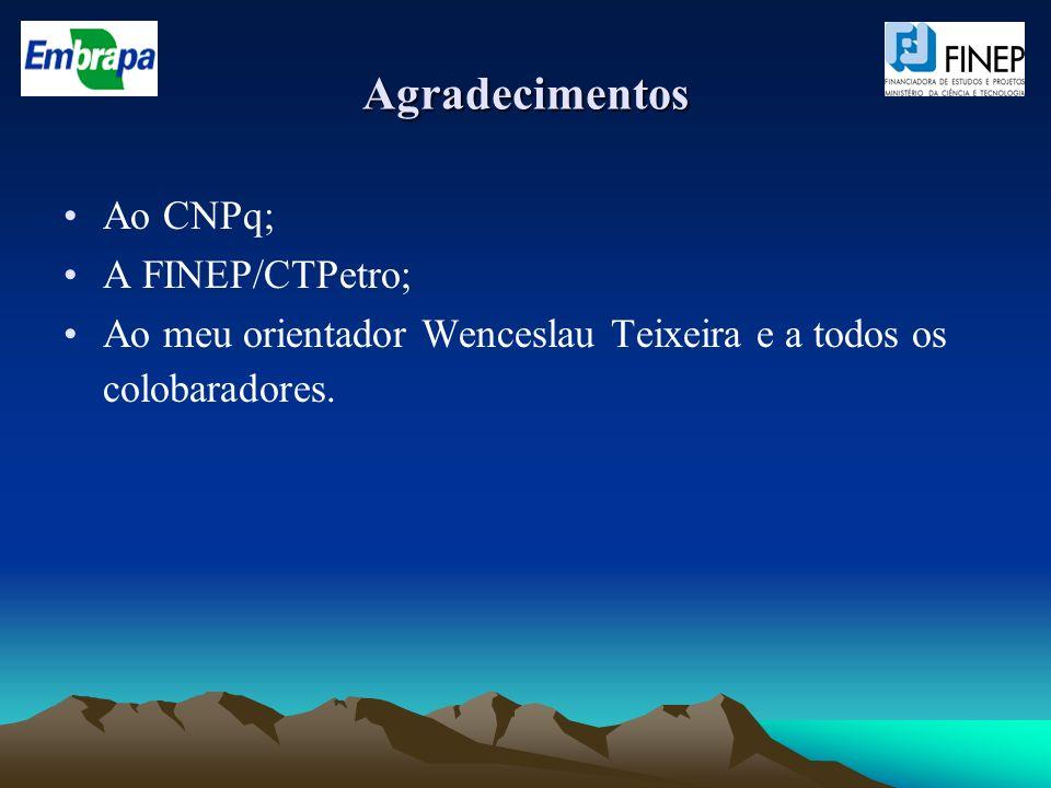 Agradecimentos Ao CNPq; A FINEP/CTPetro;
