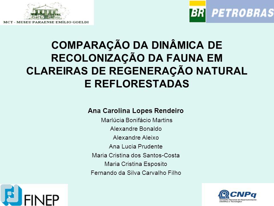 Ana Carolina Lopes Rendeiro