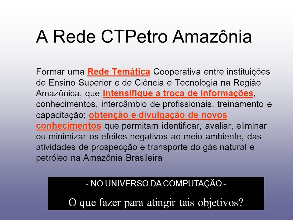 A Rede CTPetro Amazônia