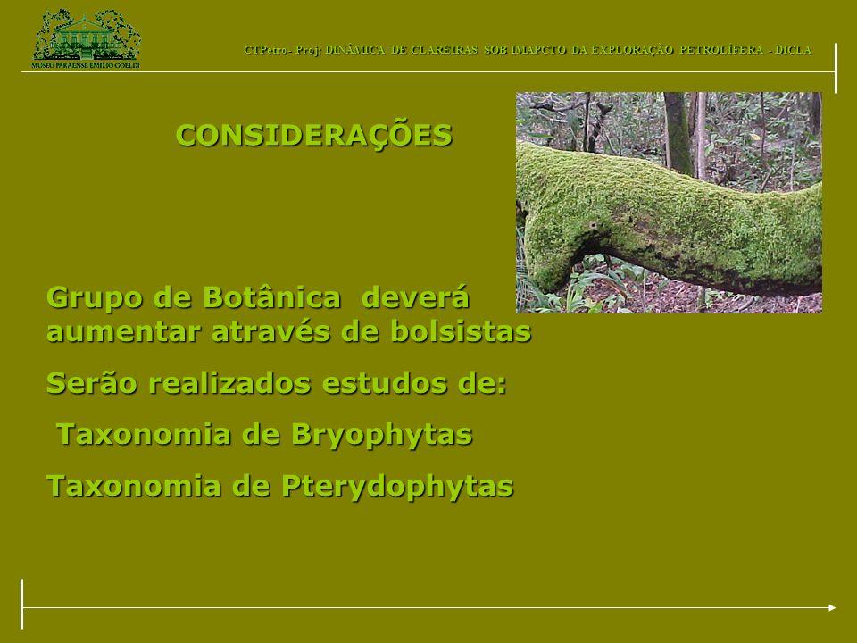CONSIDERAÇÕESGrupo de Botânica deverá aumentar através de bolsistas. Serão realizados estudos de: Taxonomia de Bryophytas.
