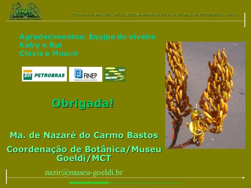 Ma. de Nazaré do Carmo Bastos Coordenação de Botânica/Museu Goeldi/MCT