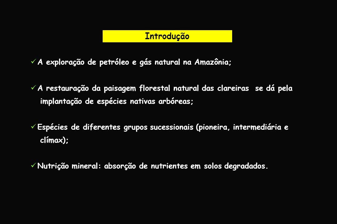 Introdução A exploração de petróleo e gás natural na Amazônia;