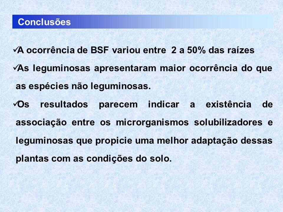 Conclusões A ocorrência de BSF variou entre 2 a 50% das raízes. As leguminosas apresentaram maior ocorrência do que as espécies não leguminosas.