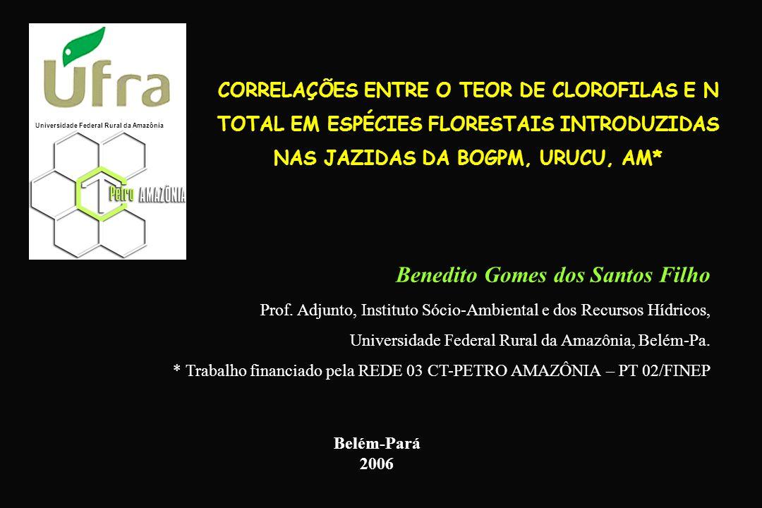 Benedito Gomes dos Santos Filho