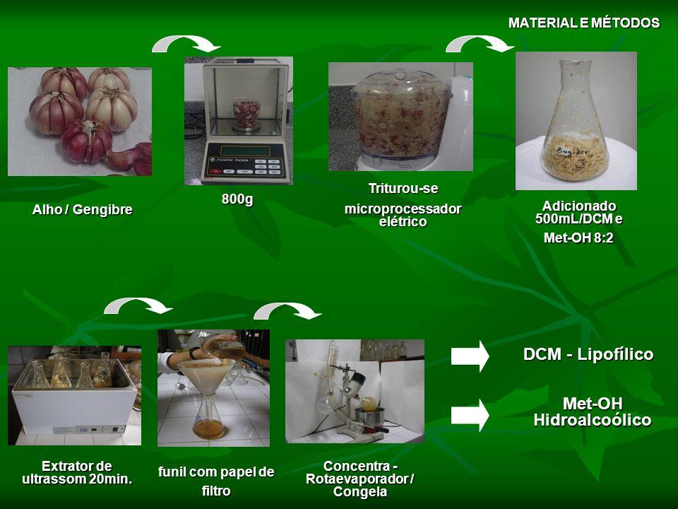 DCM - Lipofílico Met-OH Hidroalcoólico