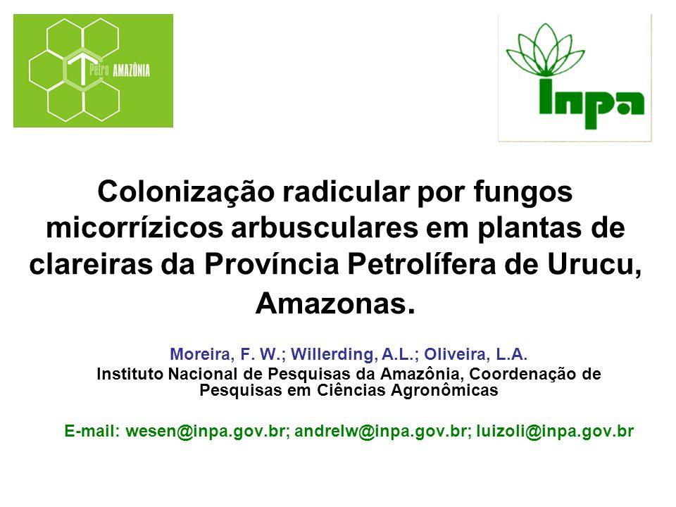 Colonização radicular por fungos micorrízicos arbusculares em plantas de clareiras da Província Petrolífera de Urucu, Amazonas.