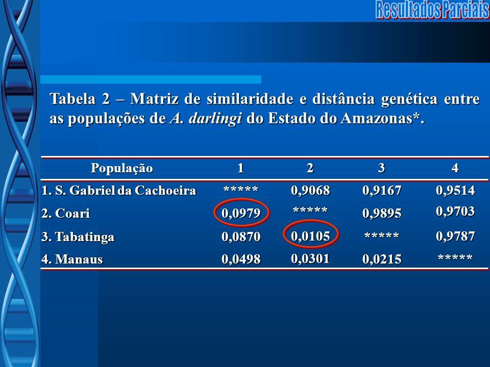 Resultados Parciais Tabela 2 – Matriz de similaridade e distância genética entre as populações de A. darlingi do Estado do Amazonas*.