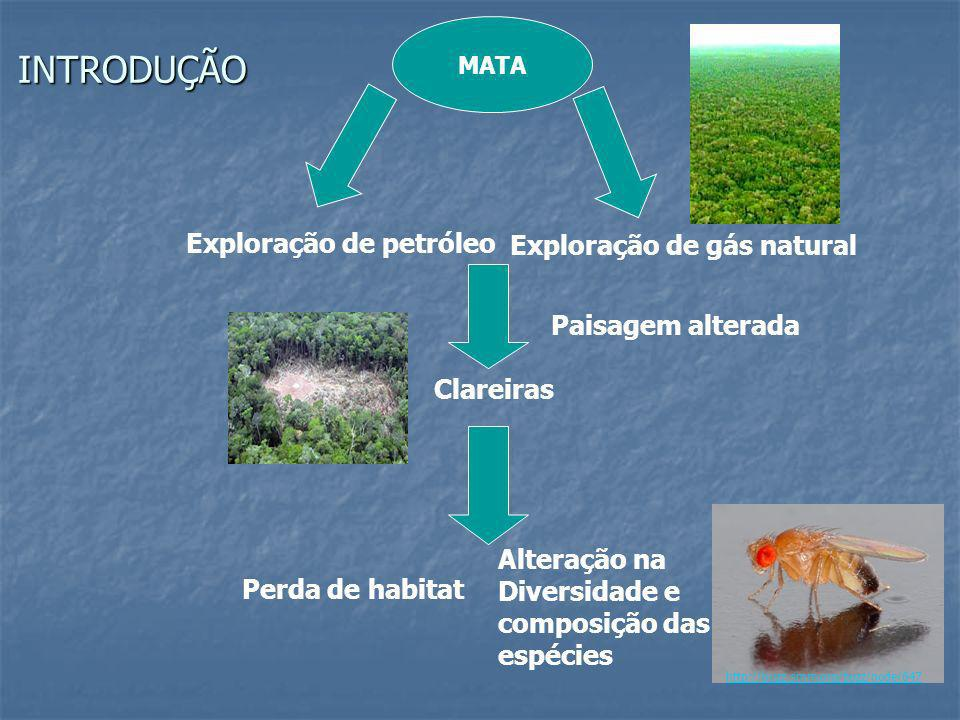 INTRODUÇÃO Exploração de petróleo Exploração de gás natural