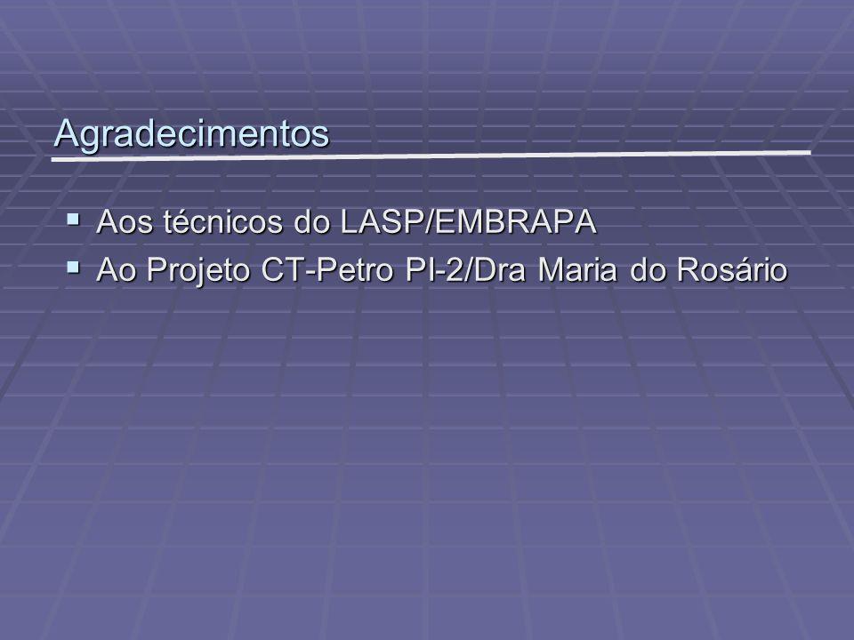 Agradecimentos Aos técnicos do LASP/EMBRAPA
