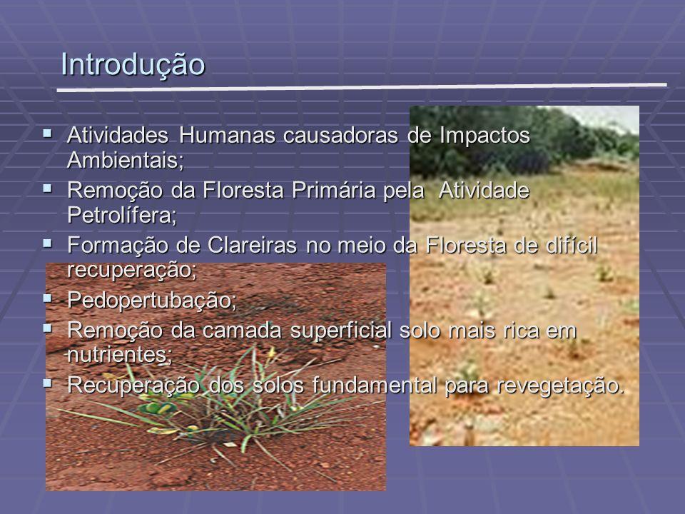 Introdução Atividades Humanas causadoras de Impactos Ambientais;