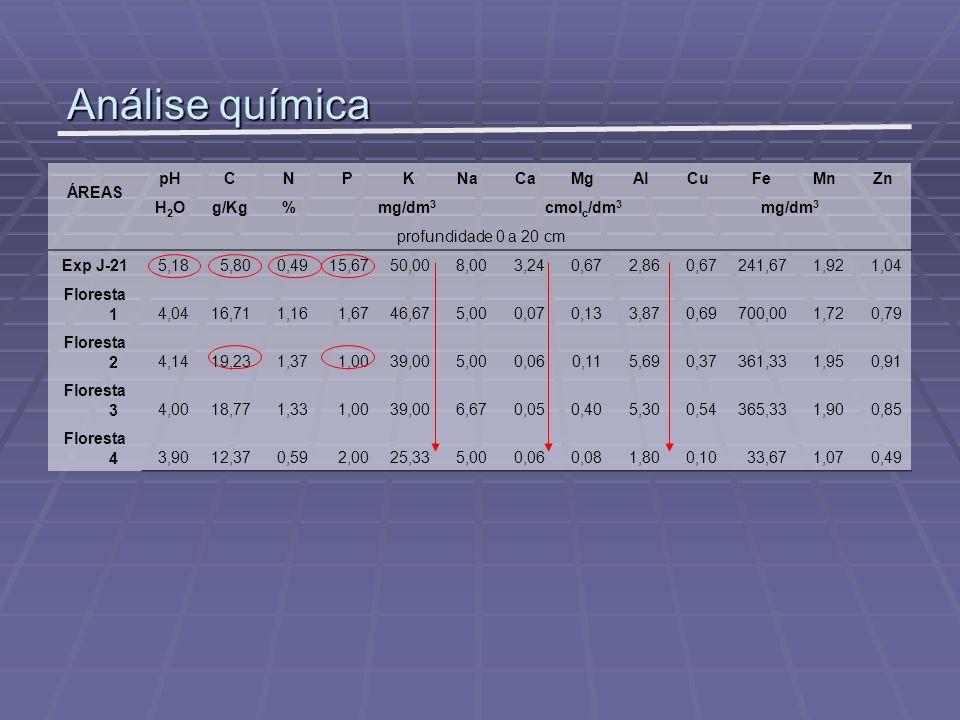 Análise química ÁREAS pH C N P K Na Ca Mg Al Cu Fe Mn Zn H2O g/Kg %