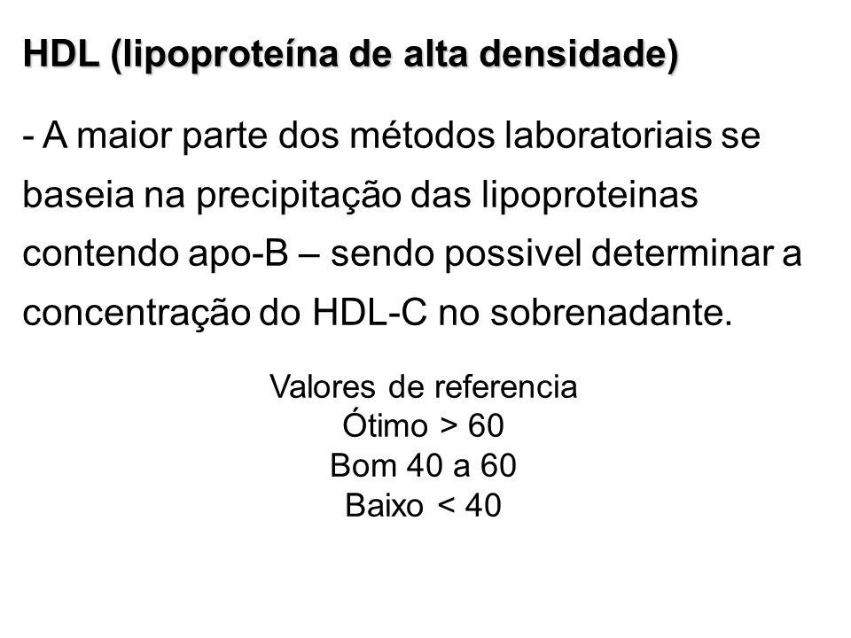 HDL (lipoproteína de alta densidade)