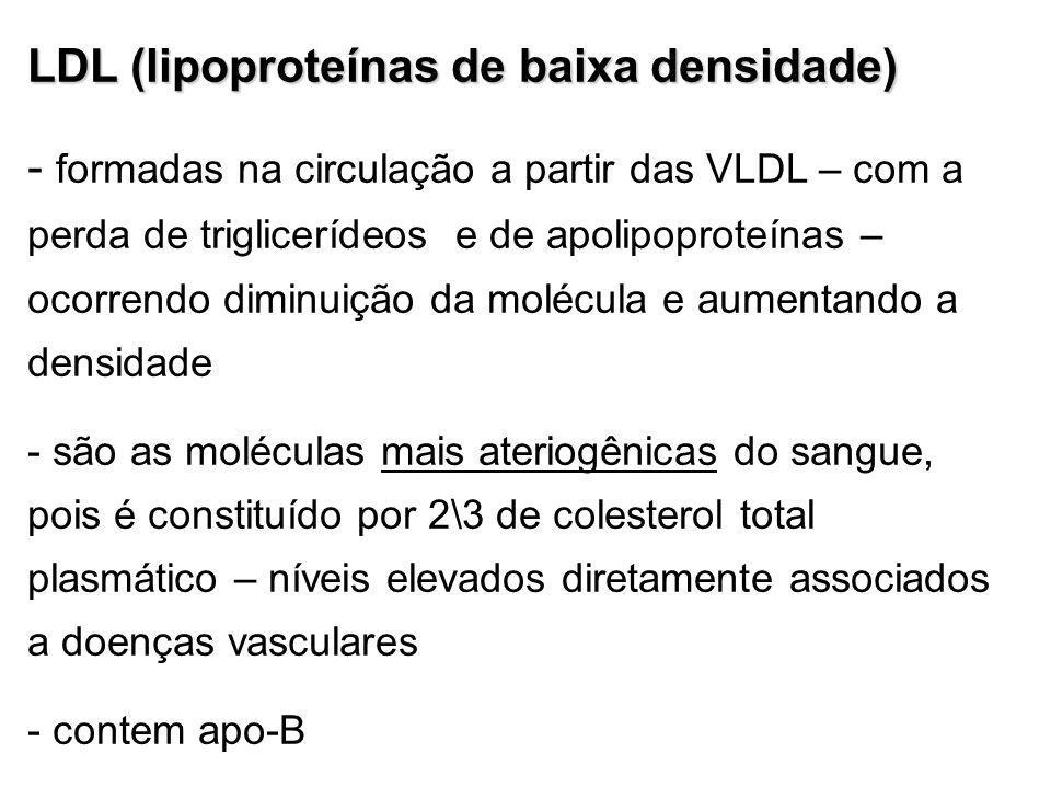 LDL (lipoproteínas de baixa densidade)