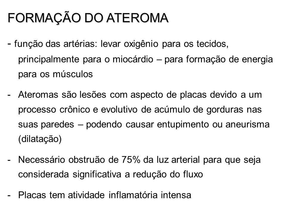 FORMAÇÃO DO ATEROMA