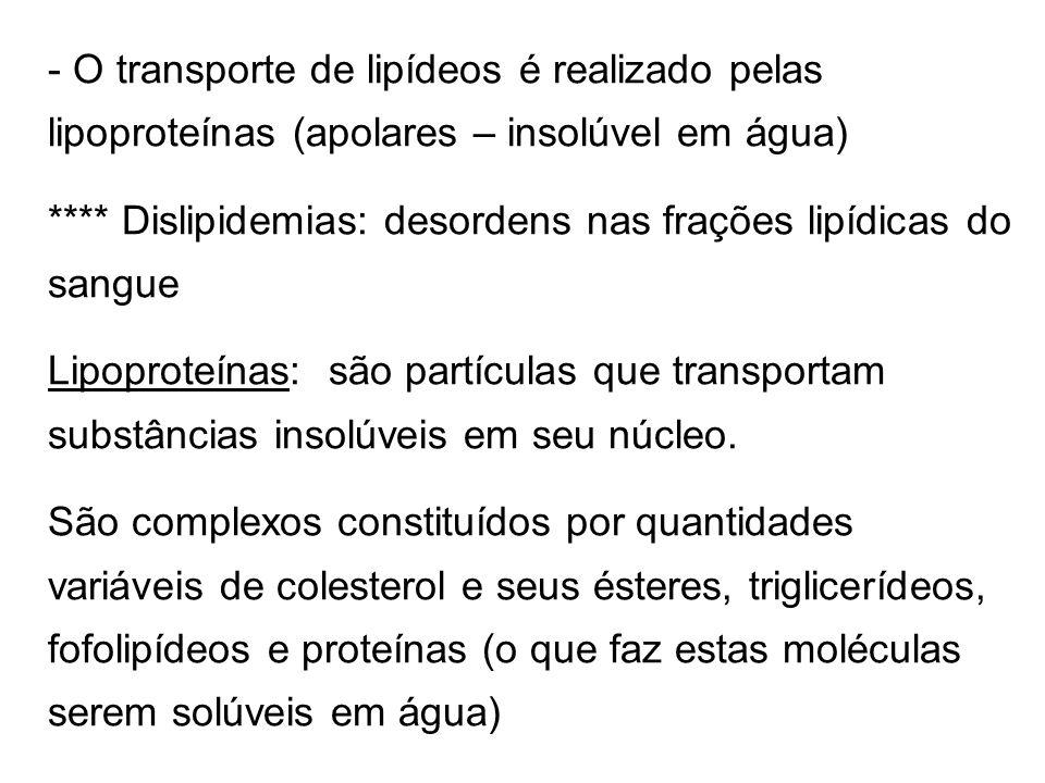 O transporte de lipídeos é realizado pelas lipoproteínas (apolares – insolúvel em água)