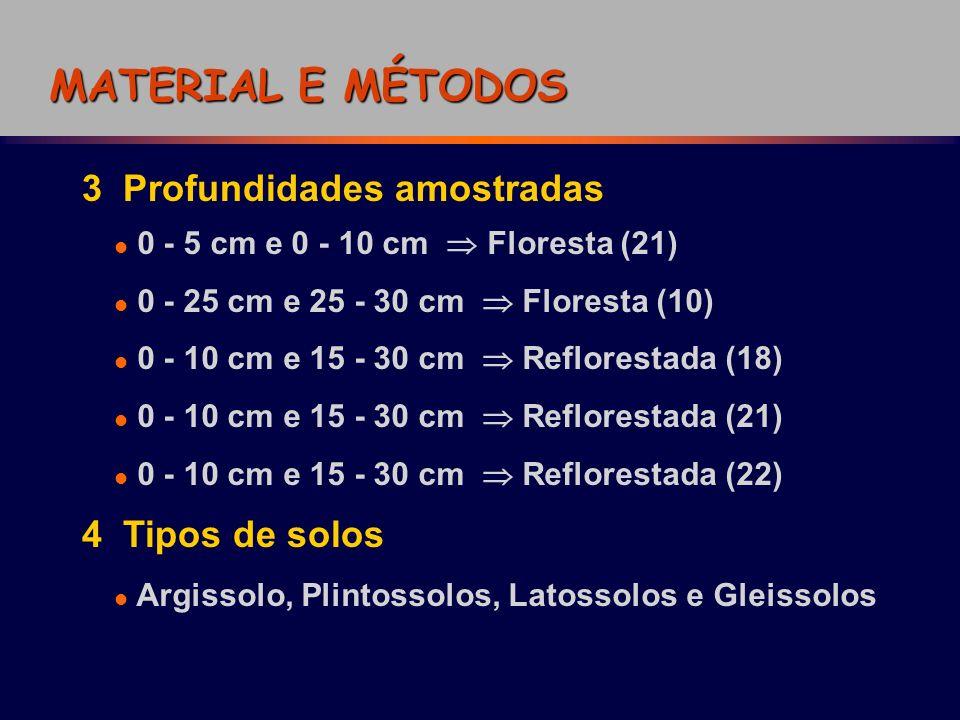 MATERIAL E MÉTODOS 3 Profundidades amostradas 4 Tipos de solos