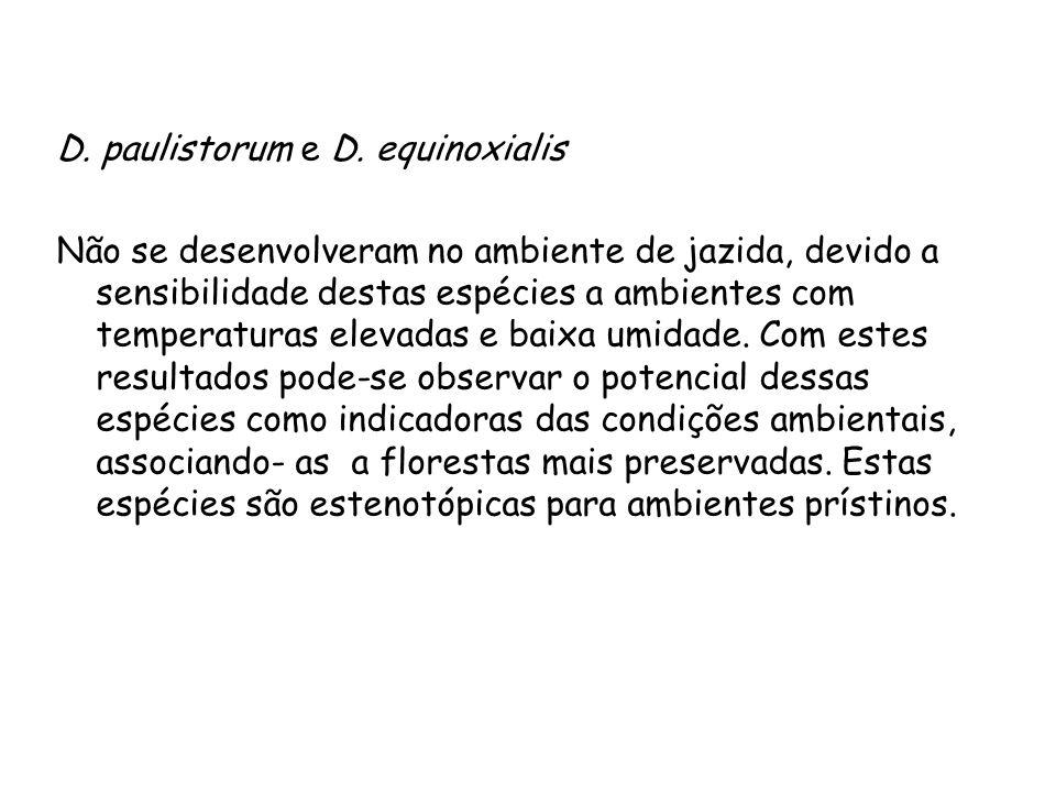 D. paulistorum e D. equinoxialis