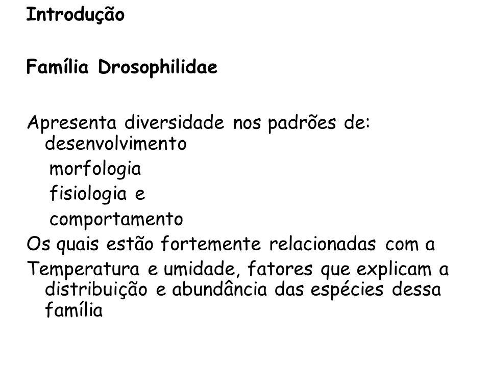 Introdução Família Drosophilidae. Apresenta diversidade nos padrões de: desenvolvimento. morfologia.