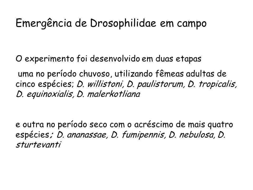 Emergência de Drosophilidae em campo