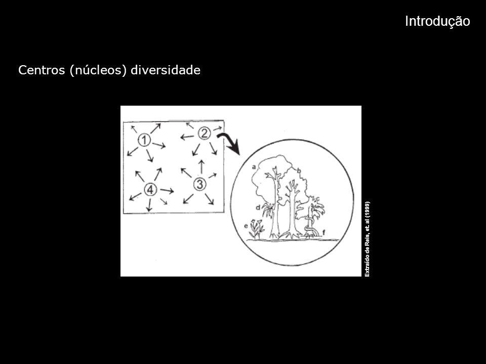 Introdução Centros (núcleos) diversidade A