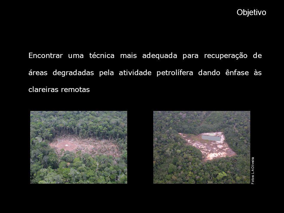 Objetivo Encontrar uma técnica mais adequada para recuperação de áreas degradadas pela atividade petrolífera dando ênfase às clareiras remotas.
