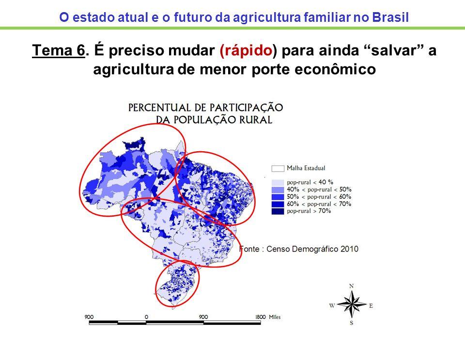 O estado atual e o futuro da agricultura familiar no Brasil Tema 6