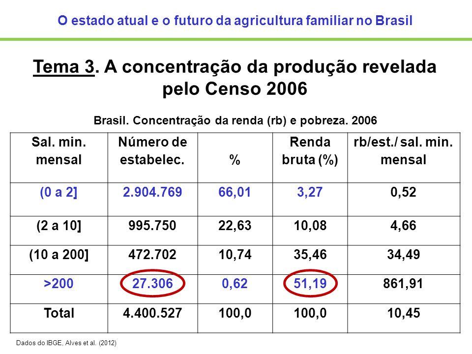 Tema 3. A concentração da produção revelada pelo Censo 2006