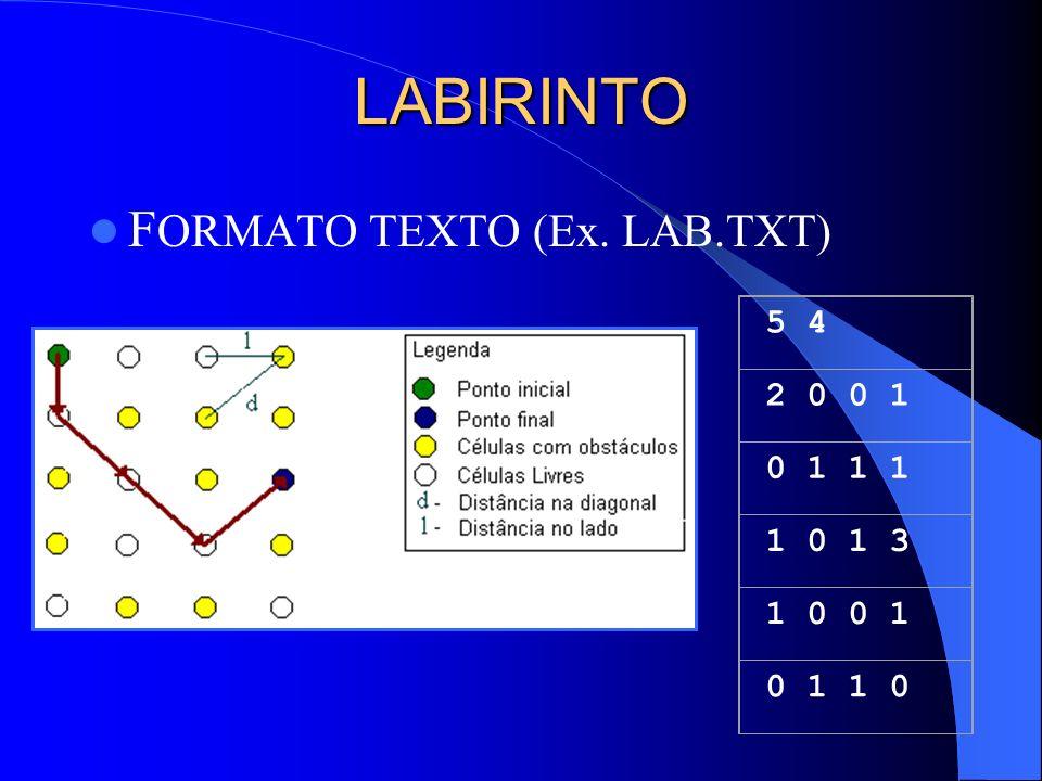 LABIRINTO FORMATO TEXTO (Ex. LAB.TXT) 5 4 2 0 0 1 0 1 1 1 1 0 1 3