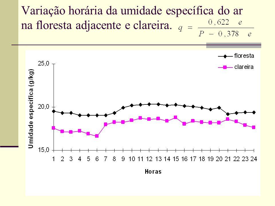 Variação horária da umidade específica do ar na floresta adjacente e clareira.
