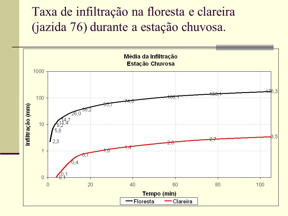 Taxa de infiltração na floresta e clareira (jazida 76) durante a estação chuvosa.