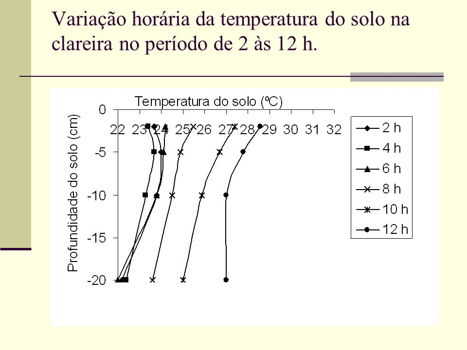 Variação horária da temperatura do solo na clareira no período de 2 às 12 h.