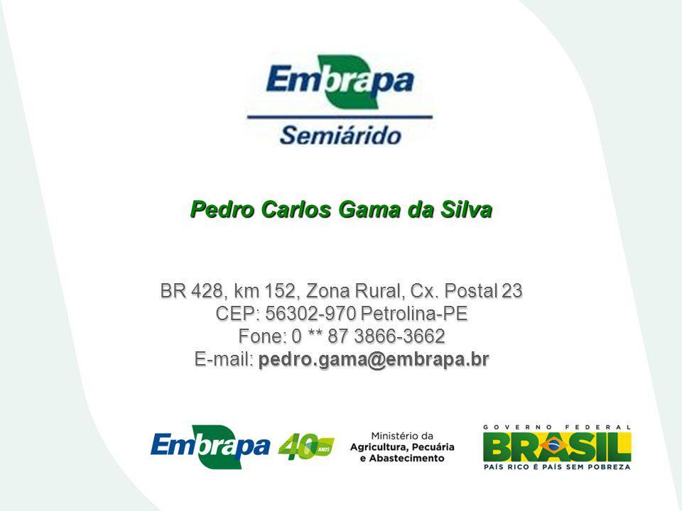 Pedro Carlos Gama da Silva