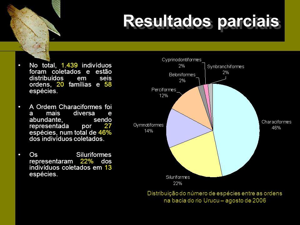 Resultados parciais No total, 1.439 indivíduos foram coletados e estão distribuídos em seis ordens, 20 famílias e 58 espécies.