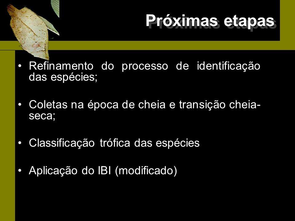 Próximas etapas Refinamento do processo de identificação das espécies;