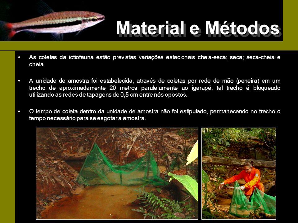Material e Métodos As coletas da ictiofauna estão previstas variações estacionais cheia-seca; seca; seca-cheia e cheia.