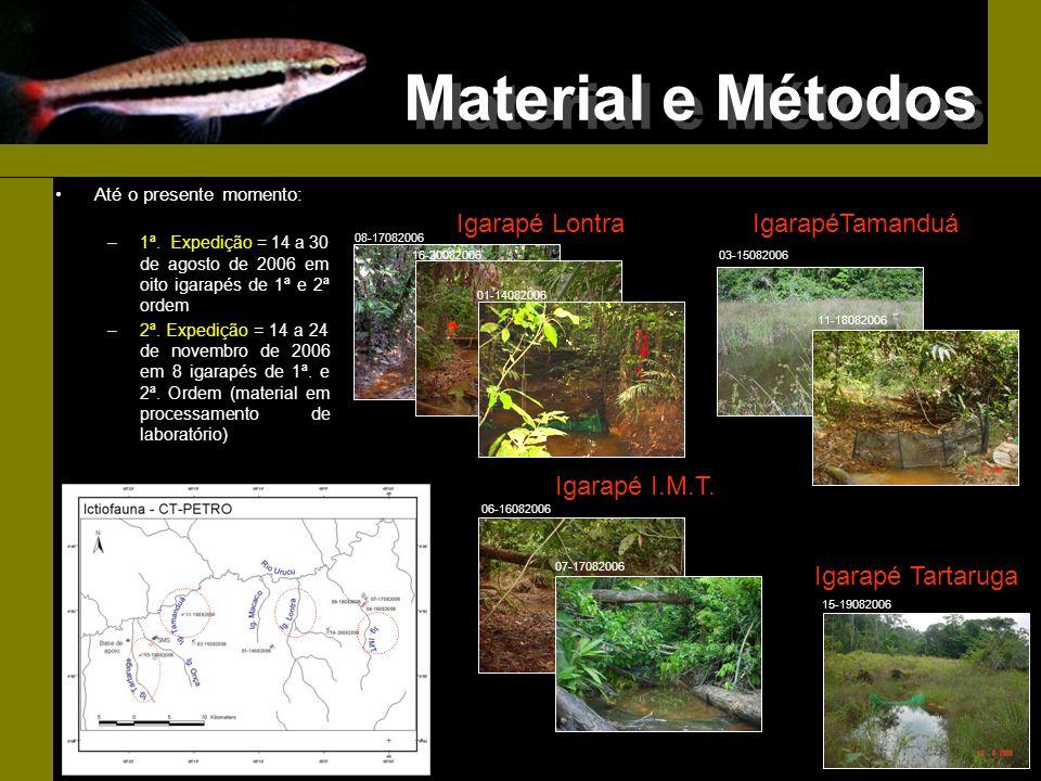 Material e Métodos Igarapé Lontra IgarapéTamanduá Igarapé I.M.T.