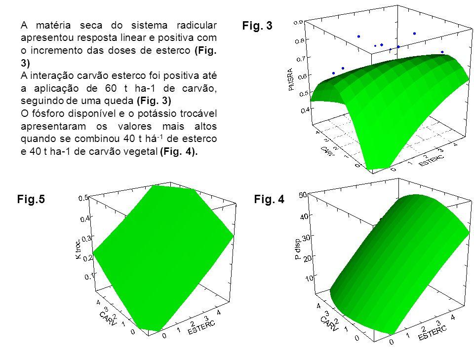 A matéria seca do sistema radicular apresentou resposta linear e positiva com o incremento das doses de esterco (Fig. 3)