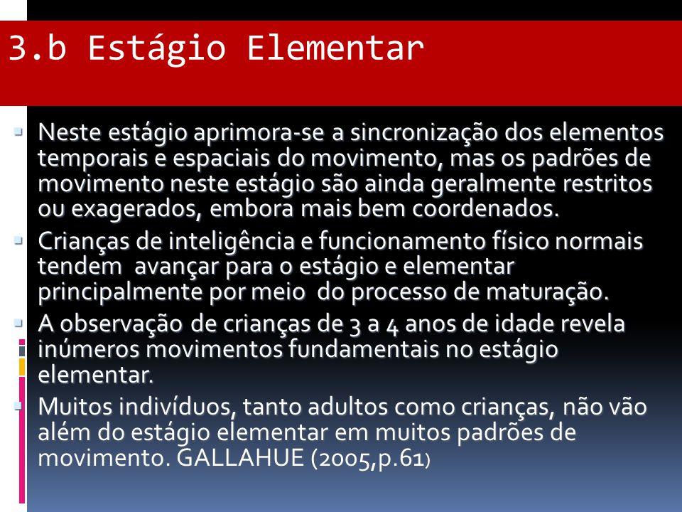 3.b Estágio Elementar