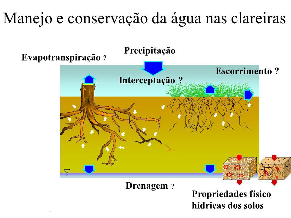 Manejo e conservação da água nas clareiras