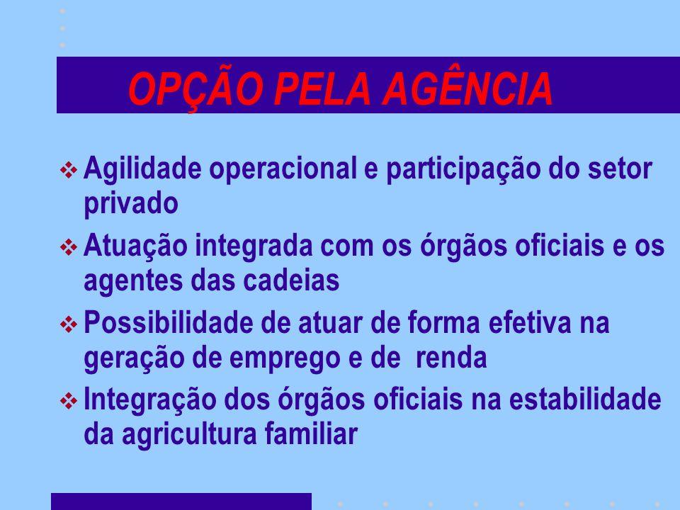 OPÇÃO PELA AGÊNCIA Agilidade operacional e participação do setor privado. Atuação integrada com os órgãos oficiais e os agentes das cadeias.
