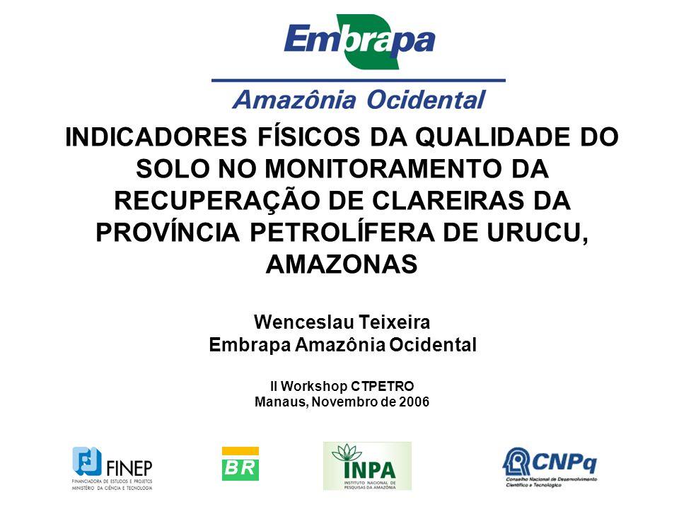 INDICADORES FÍSICOS DA QUALIDADE DO SOLO NO MONITORAMENTO DA RECUPERAÇÃO DE CLAREIRAS DA PROVÍNCIA PETROLÍFERA DE URUCU, AMAZONAS Wenceslau Teixeira Embrapa Amazônia Ocidental II Workshop CTPETRO Manaus, Novembro de 2006