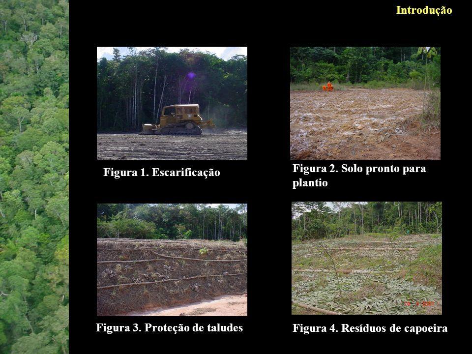 Introdução Figura 2. Solo pronto para plantio. Figura 1. Escarificação. Figura 3. Proteção de taludes.